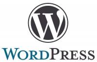 Wordpress ... die neue Art von Websites? ... gibt's auch von PrimeMarketing